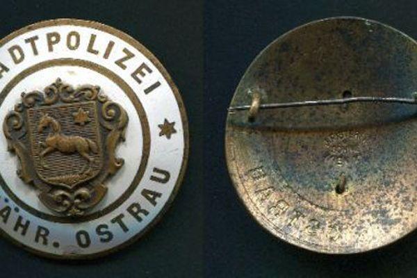 odznak01530FE12B-2FEE-47FE-707A-D05AF10B29DB.jpg